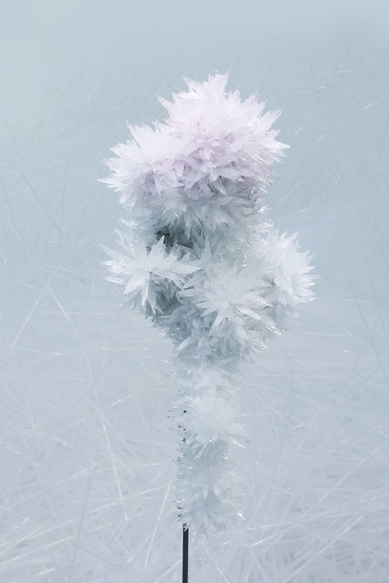 crystallize7