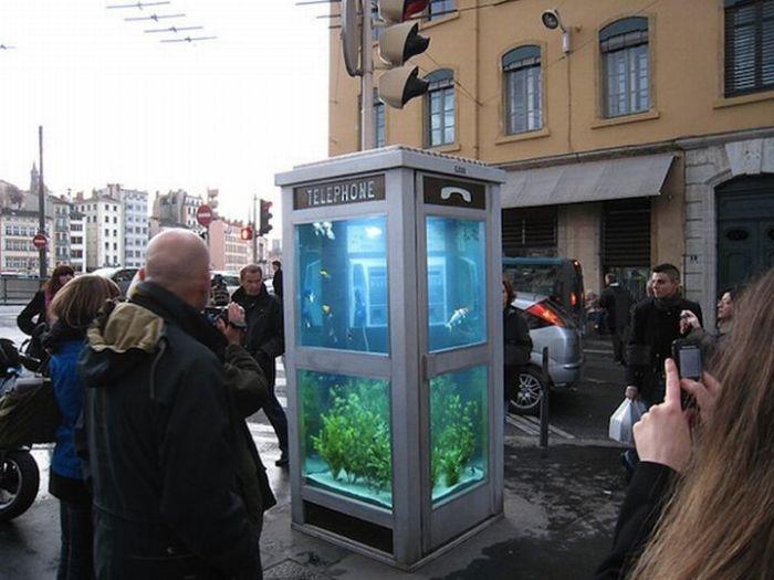 evasion urbane