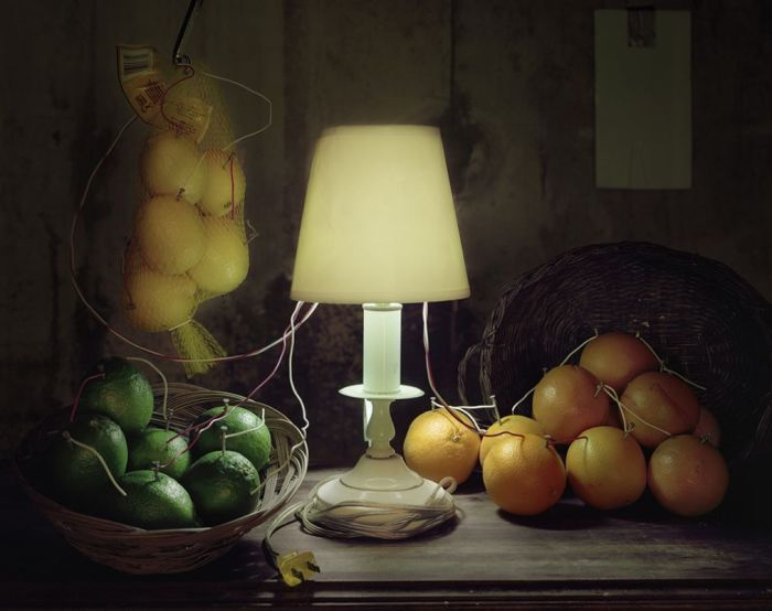 Caleb Charland Back To Light Still Life Citrus