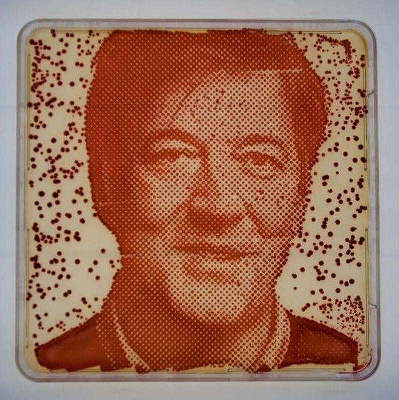 Stephen Fry Bacteriograph