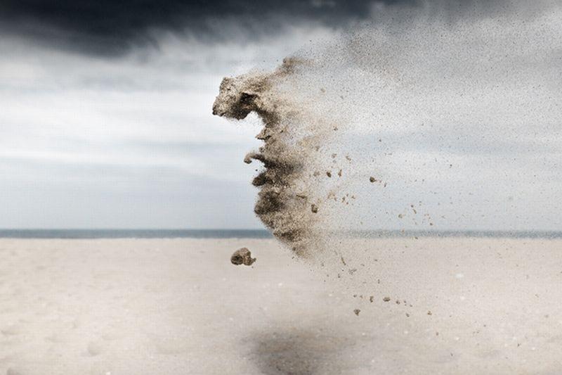 Claire Droppert Sand Creatures 5