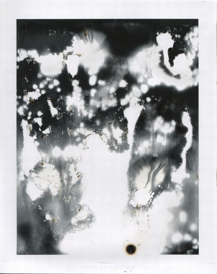Phillip Stearns Polaroid 1