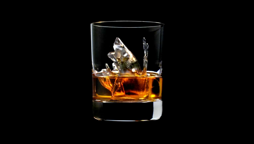Suntory 3D Ice Cube Shark