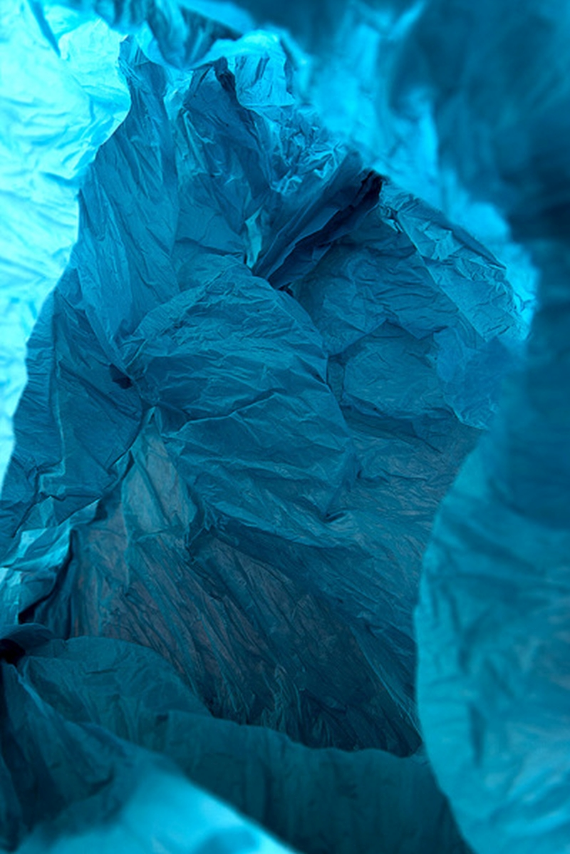 Plastic Bag Landscapes
